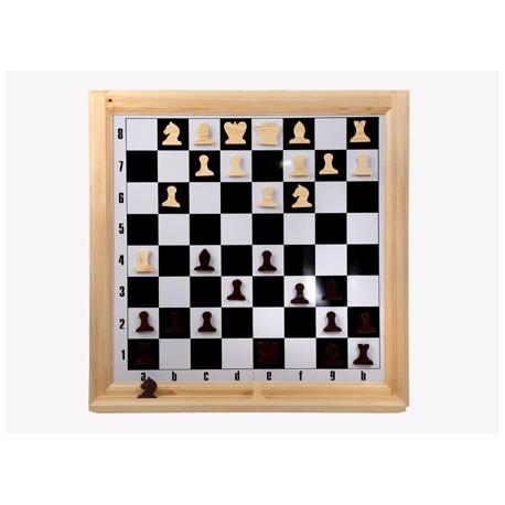 Демонстрационные  магнитные шахматы